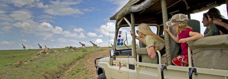safari famille afrique du sud