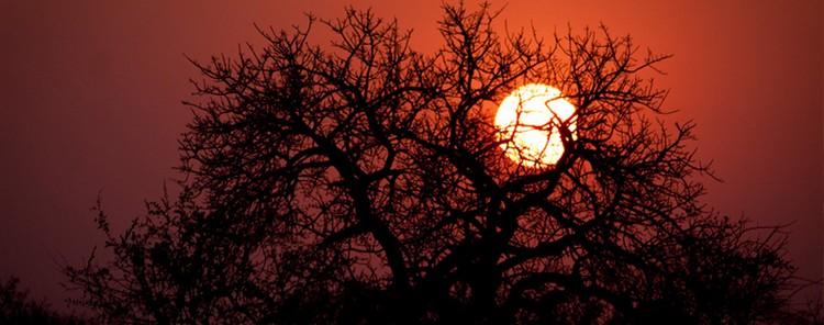 lodge nouveauté afrique du sud soleil couchant