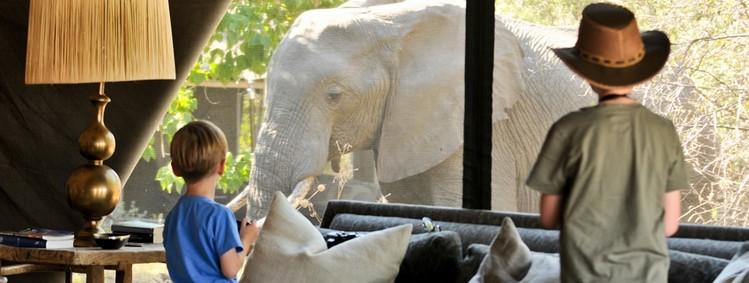 activités safari pour en enfants afrique du sud