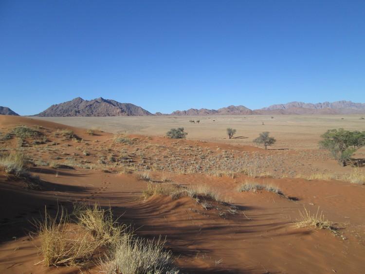 desert-du-namib-elim-dune